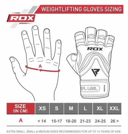 【線上體育】RDX GYM 舉重手套 PAPER 皮革 S9 金色