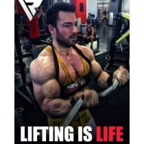 【線上體育】RDX 健身 二頭肌訓練板 黑 RDX047