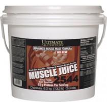 【線上體育】ULTIMATE NUTRITION 馬力偉肌力果汁2544 巧克力 6kg